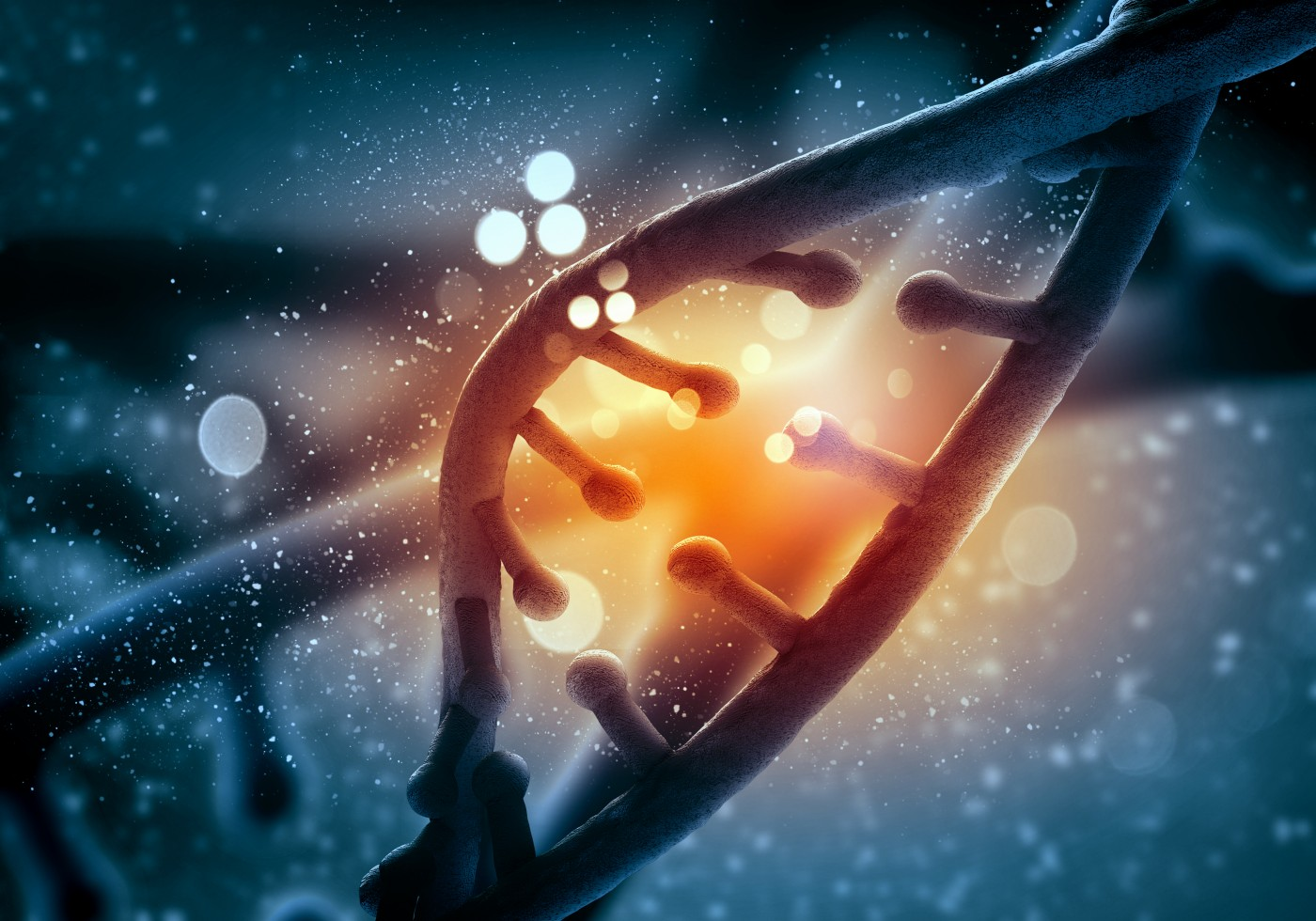 BPH Study Finds Telomerase May Be Key Player in Disease Pathology