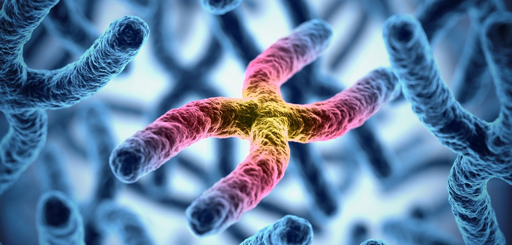 High Telomerase Activity Seen as Restricted to Progenitor Cells in BPH Study