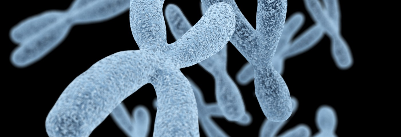 Chromosome Abnormalities in BPH Not Related to Disease, Study Finds